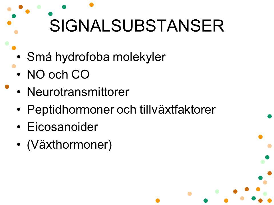 SIGNALSUBSTANSER Små hydrofoba molekyler NO och CO Neurotransmittorer Peptidhormoner och tillväxtfaktorer Eicosanoider (Växthormoner)