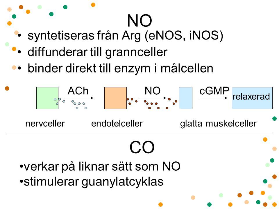 NO syntetiseras från Arg (eNOS, iNOS) diffunderar till grannceller binder direkt till enzym i målcellen nervceller endotelceller glatta muskelceller AChcGMPNO relaxerad CO verkar på liknar sätt som NO stimulerar guanylatcyklas