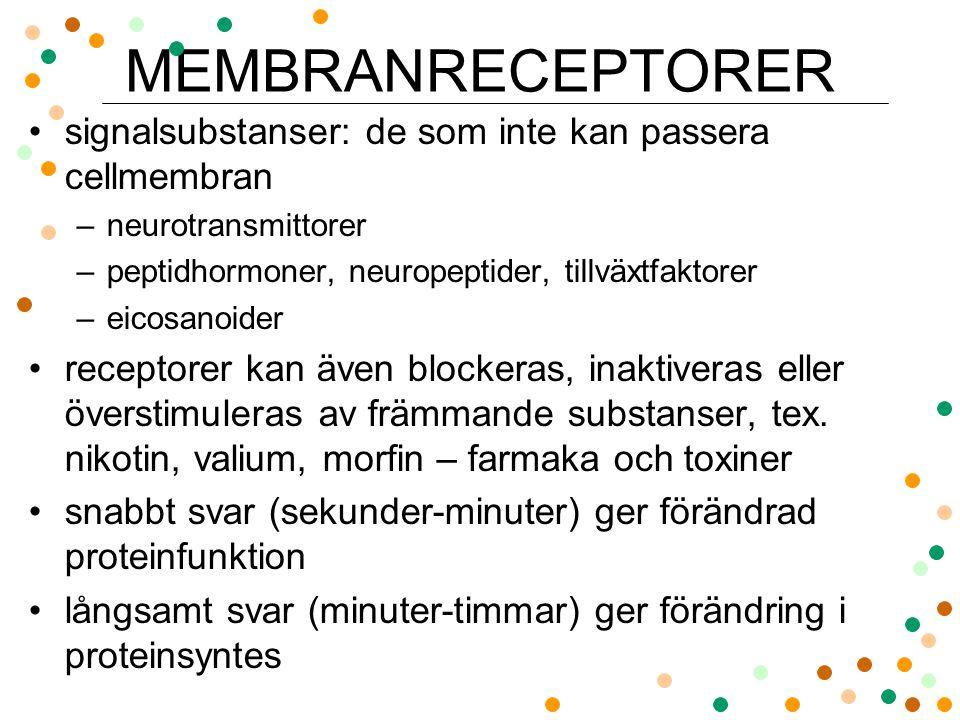 signalsubstanser: de som inte kan passera cellmembran –neurotransmittorer –peptidhormoner, neuropeptider, tillväxtfaktorer –eicosanoider receptorer ka