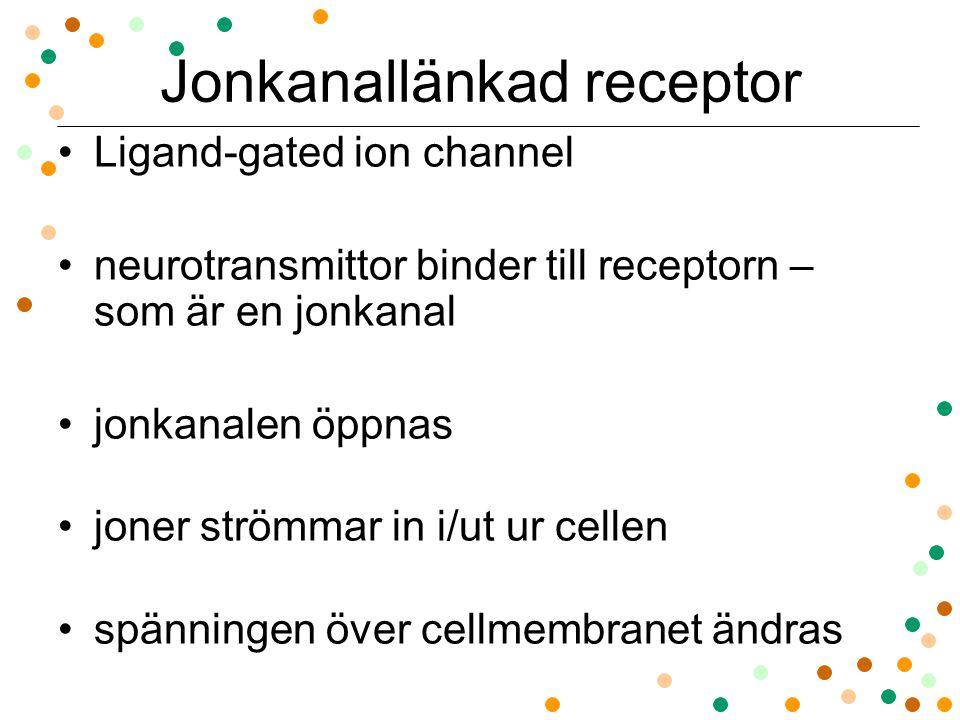 Jonkanallänkad receptor Ligand-gated ion channel neurotransmittor binder till receptorn – som är en jonkanal jonkanalen öppnas joner strömmar in i/ut