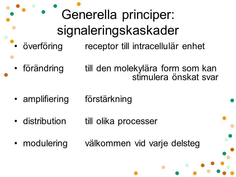 Generella principer: signaleringskaskader överföring receptor till intracellulär enhet förändring till den molekylära form som kan stimulera önskat sv