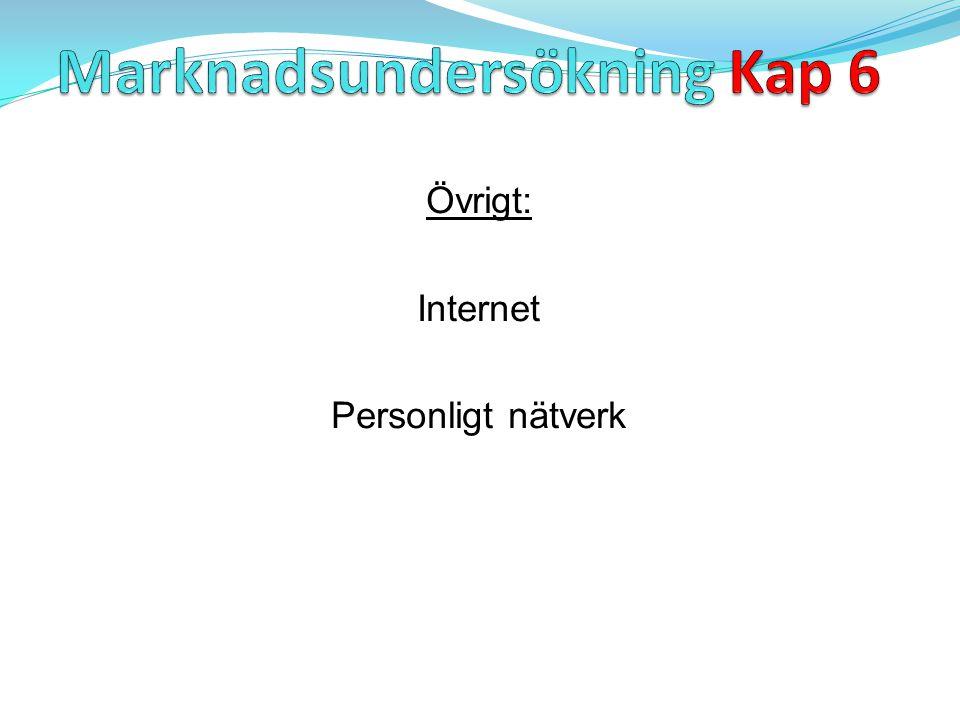 Övrigt: Internet Personligt nätverk