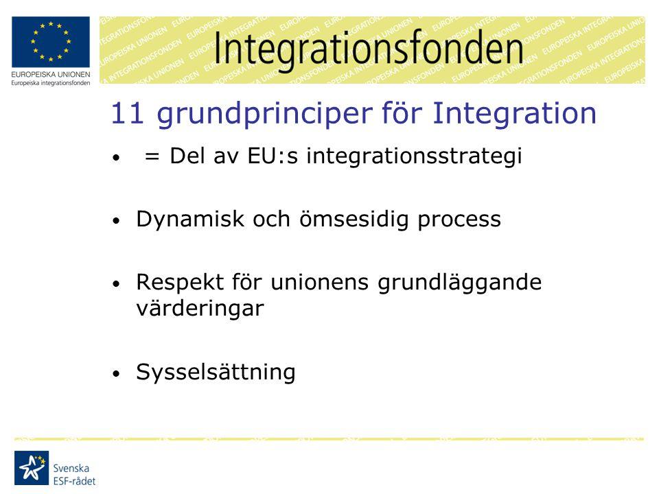 11 grundprinciper för Integration = Del av EU:s integrationsstrategi Dynamisk och ömsesidig process Respekt för unionens grundläggande värderingar Sysselsättning