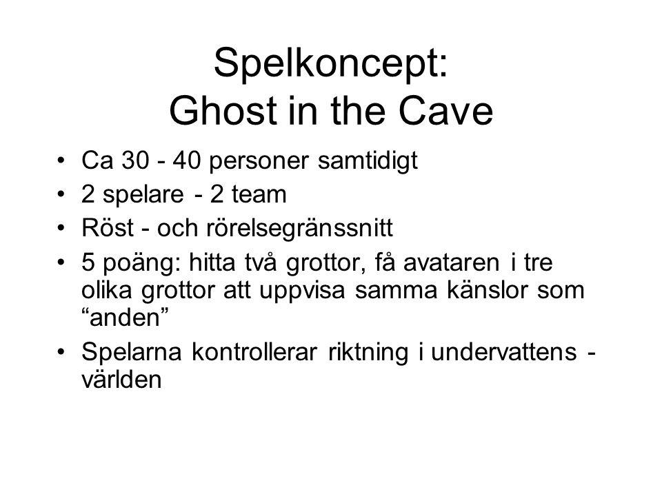 Spelkoncept: Ghost in the Cave Ca 30 - 40 personer samtidigt 2 spelare - 2 team Röst - och rörelsegränssnitt 5 poäng: hitta två grottor, få avataren i tre olika grottor att uppvisa samma känslor som anden Spelarna kontrollerar riktning i undervattens - världen