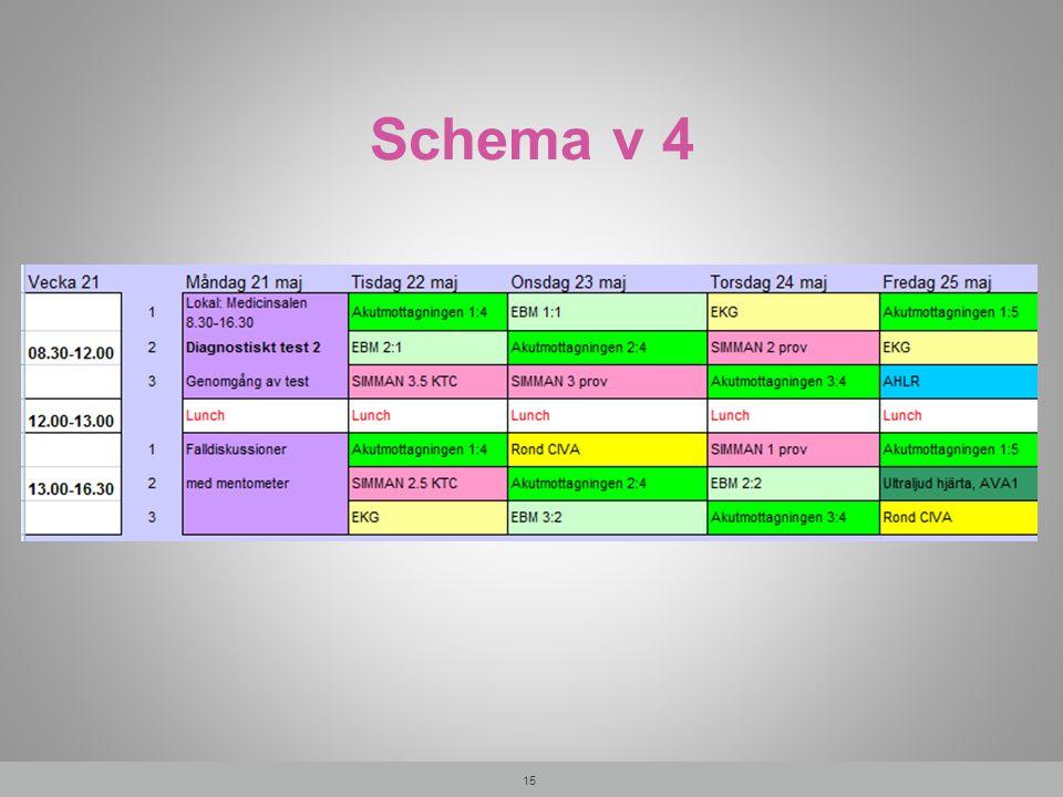 Schema v 4 15