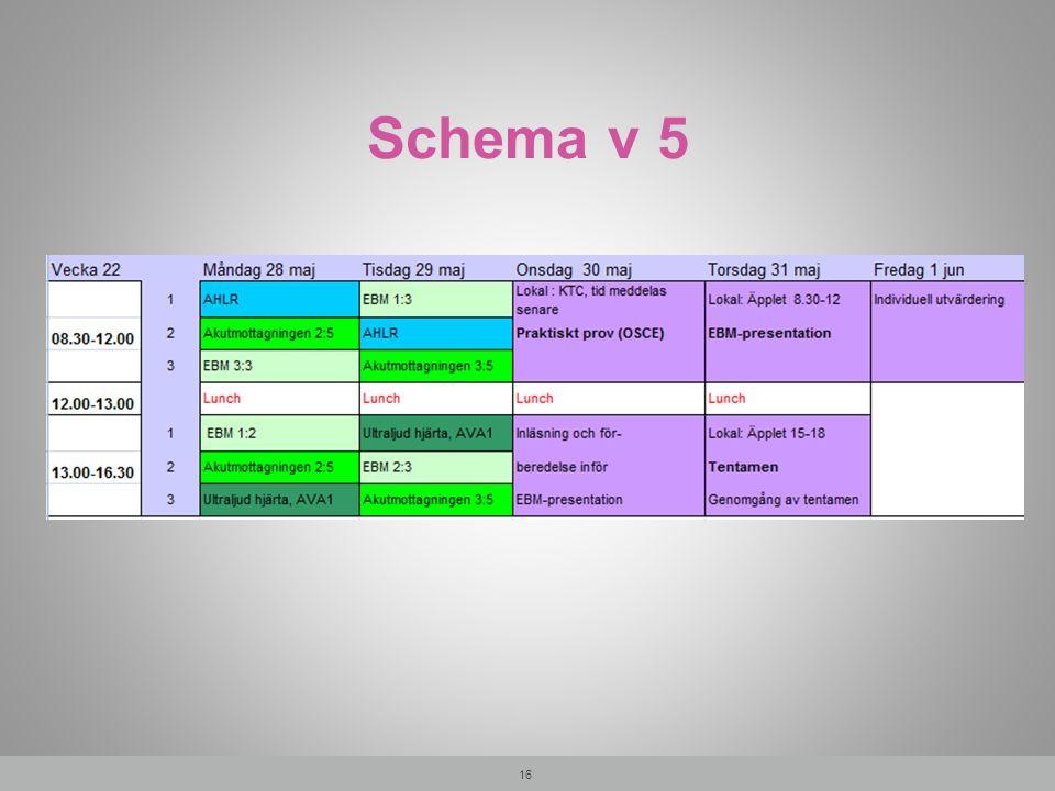 Schema v 5 16