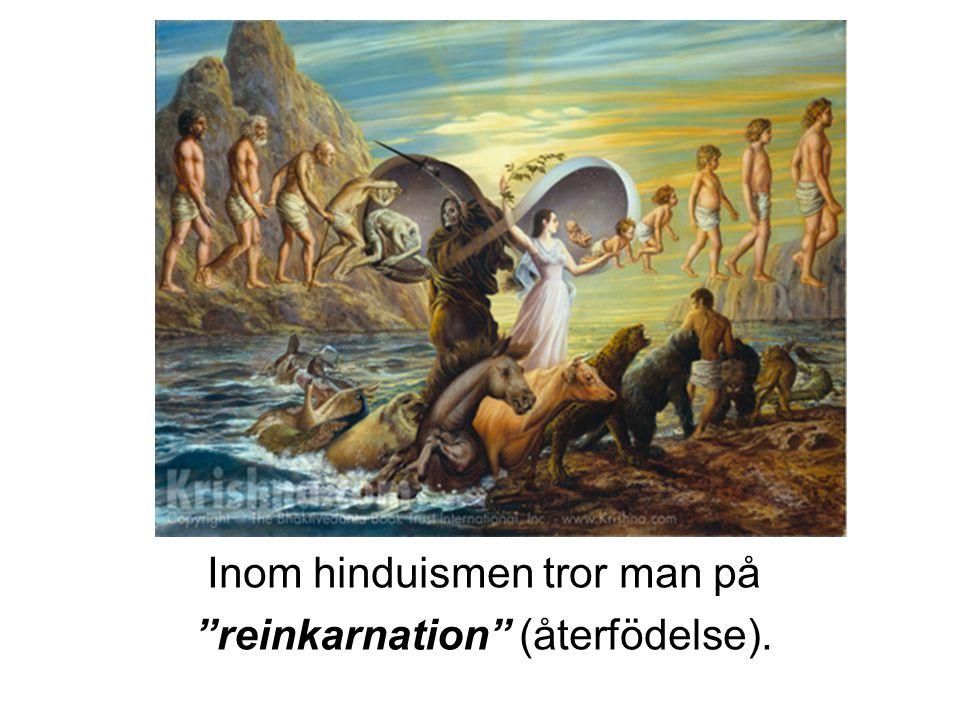 """Inom hinduismen tror man på """"reinkarnation"""" (återfödelse)."""
