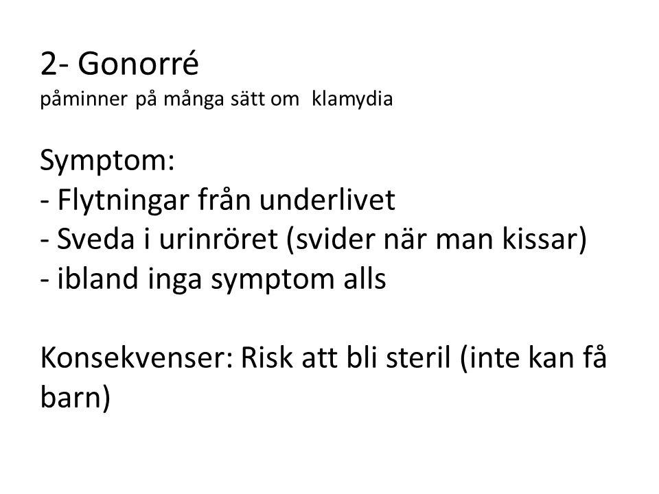 2- Gonorré påminner på många sätt om klamydia Symptom: - Flytningar från underlivet - Sveda i urinröret (svider när man kissar) - ibland inga symptom alls Konsekvenser: Risk att bli steril (inte kan få barn)