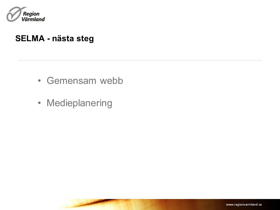 SELMA - nästa steg Gemensam webb Medieplanering