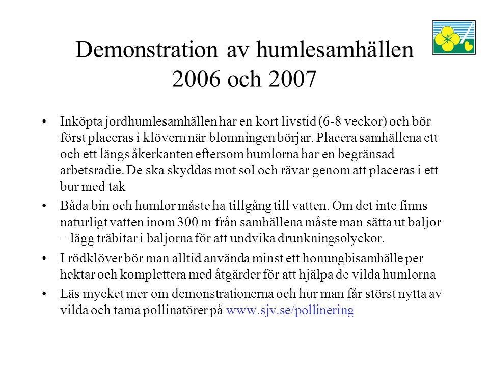 Demonstration av humlesamhällen 2006 och 2007 Inköpta jordhumlesamhällen har en kort livstid (6-8 veckor) och bör först placeras i klövern när blomnin