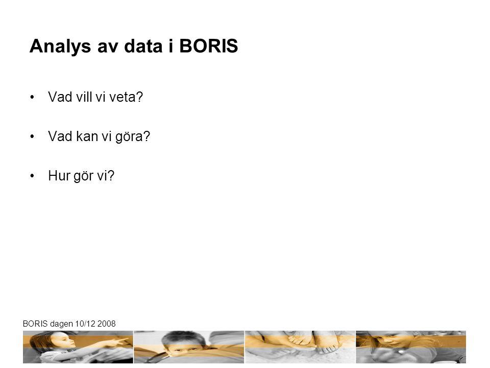 BORIS dagen 10/12 2008 Analys av data i BORIS Vad vill vi veta Vad kan vi göra Hur gör vi