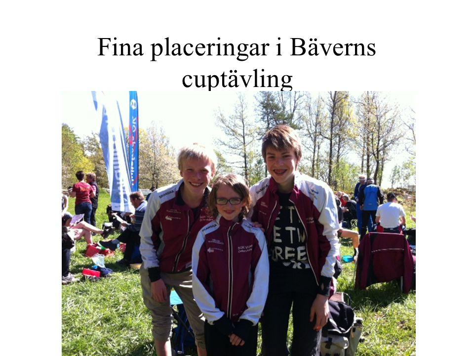 Fina placeringar i Bäverns cuptävling