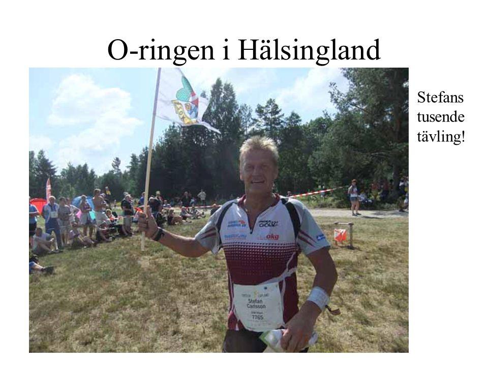 O-ringen i Hälsingland Stefans tusende tävling!