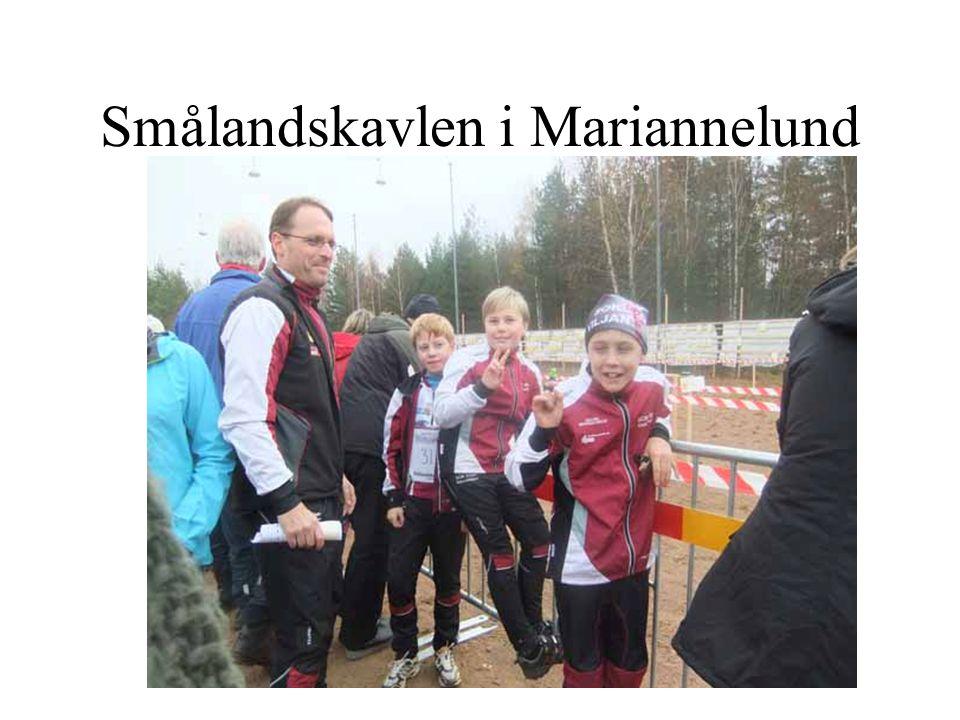 Smålandskavlen i Mariannelund