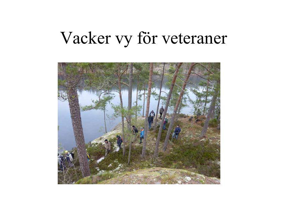Vacker vy för veteraner