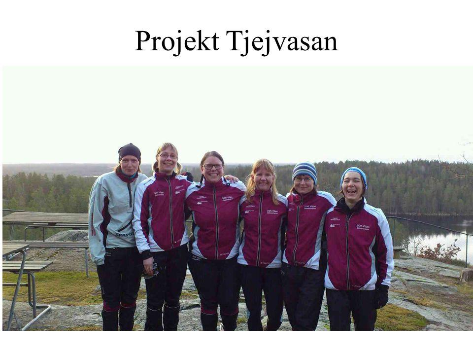 Projekt Tjejvasan