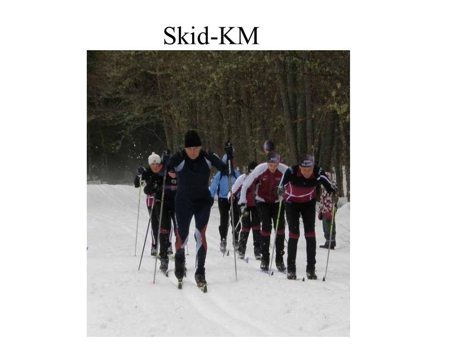 Skid-KM