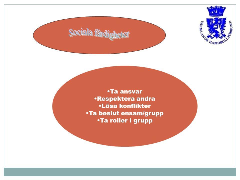 Ta ansvar Respektera andra Lösa konflikter Ta beslut ensam/grupp Ta roller i grupp
