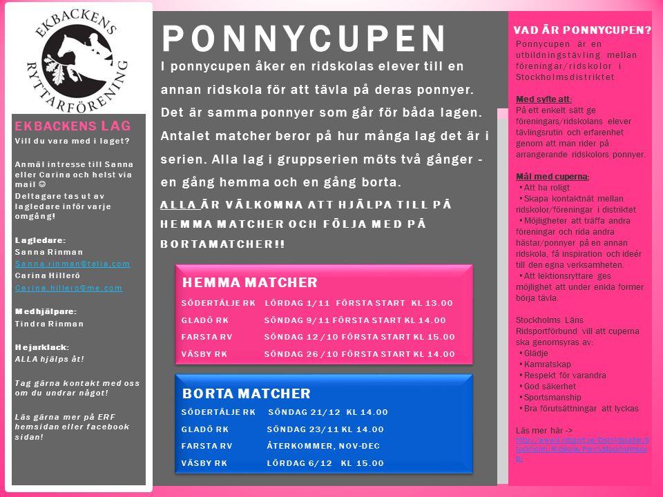 I ponnycupen åker en ridskolas elever till en annan ridskola för att tävla på deras ponnyer. Det är samma ponnyer som går för båda lagen. Antalet matc