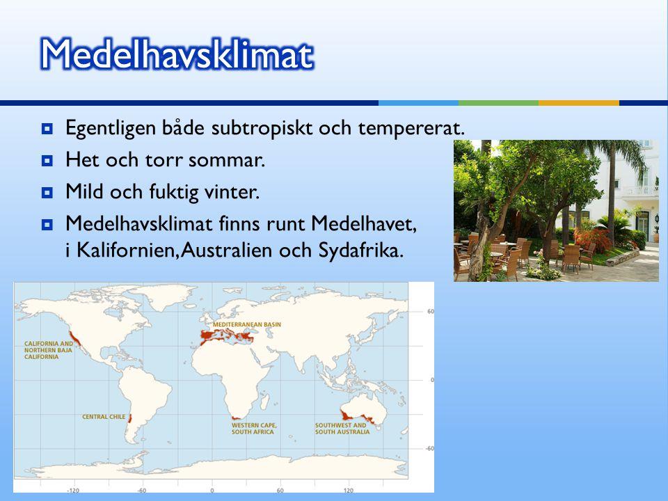  Egentligen både subtropiskt och tempererat.  Het och torr sommar.  Mild och fuktig vinter.  Medelhavsklimat finns runt Medelhavet, i Kalifornien,