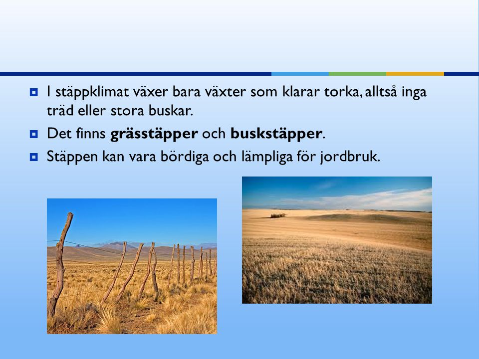  I stäppklimat växer bara växter som klarar torka, alltså inga träd eller stora buskar.  Det finns grässtäpper och buskstäpper.  Stäppen kan vara b