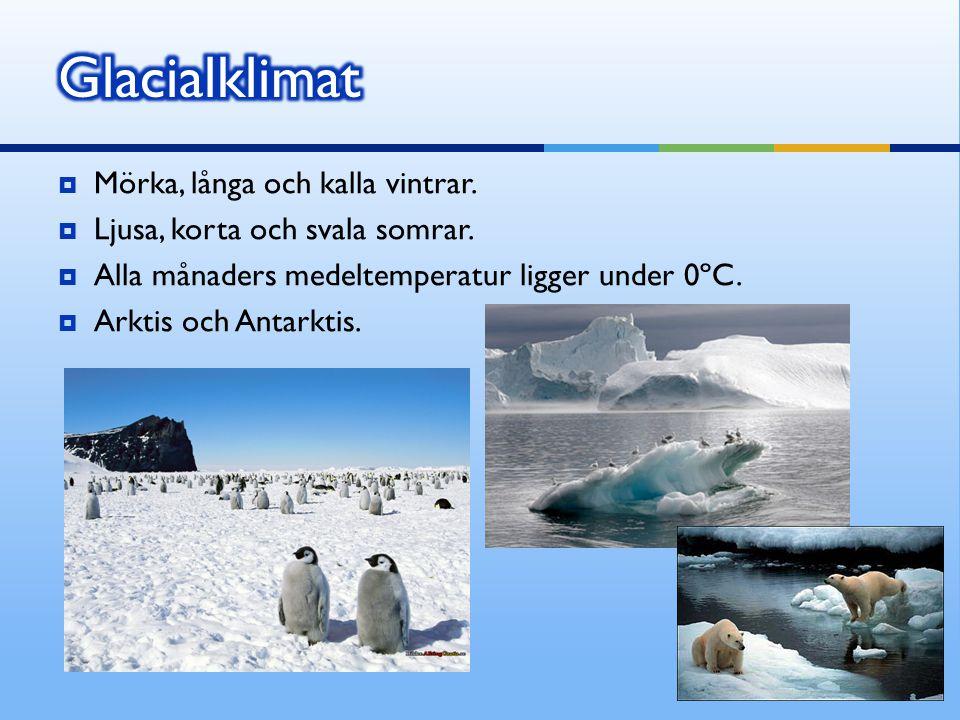  Mörka, långa och kalla vintrar.  Ljusa, korta och svala somrar.  Alla månaders medeltemperatur ligger under 0ºC.  Arktis och Antarktis.
