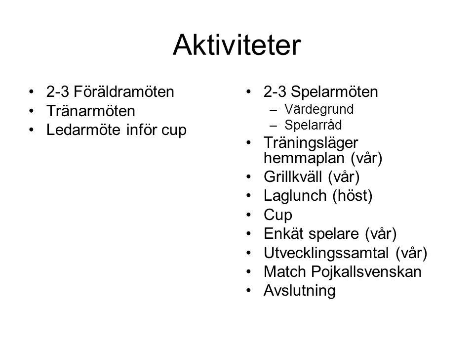 Aktiviteter 2-3 Föräldramöten Tränarmöten Ledarmöte inför cup 2-3 Spelarmöten –Värdegrund –Spelarråd Träningsläger hemmaplan (vår) Grillkväll (vår) Laglunch (höst) Cup Enkät spelare (vår) Utvecklingssamtal (vår) Match Pojkallsvenskan Avslutning