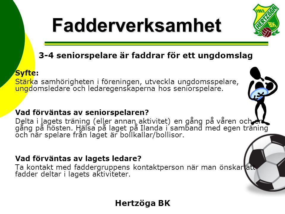 Hertzöga BK Fadderverksamhet 3-4 seniorspelare är faddrar för ett ungdomslag Syfte: Stärka samhörigheten i föreningen, utveckla ungdomsspelare, ungdom
