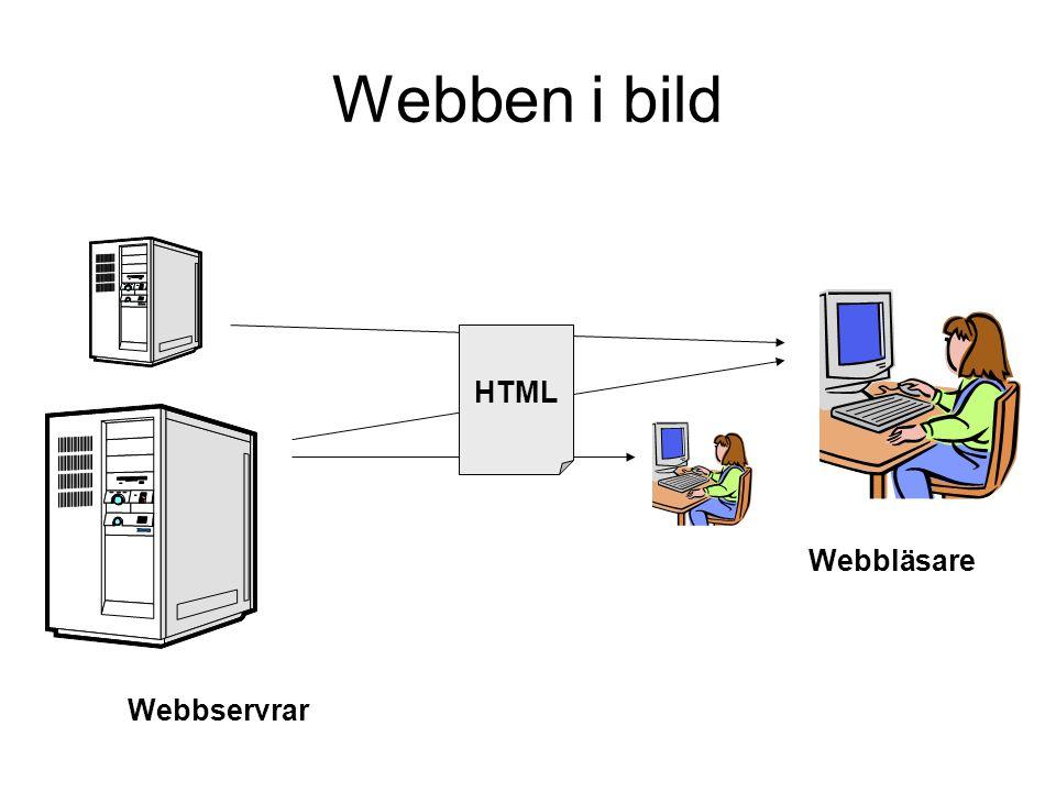 Webben i bild Webbläsare HTML Webbservrar