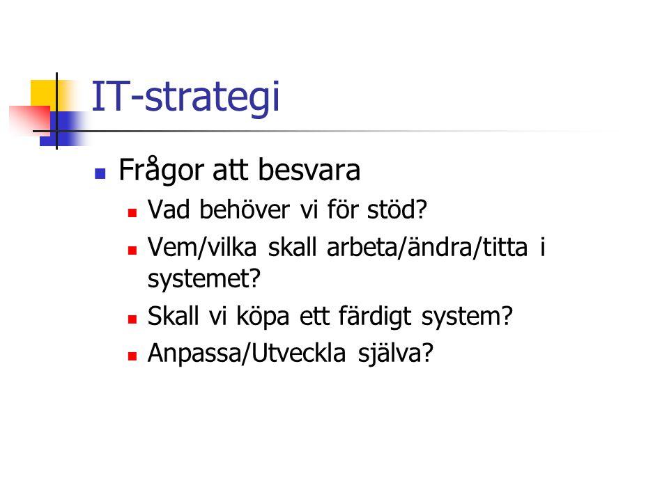 IT-strategi Var ligger tyngdpunkten.
