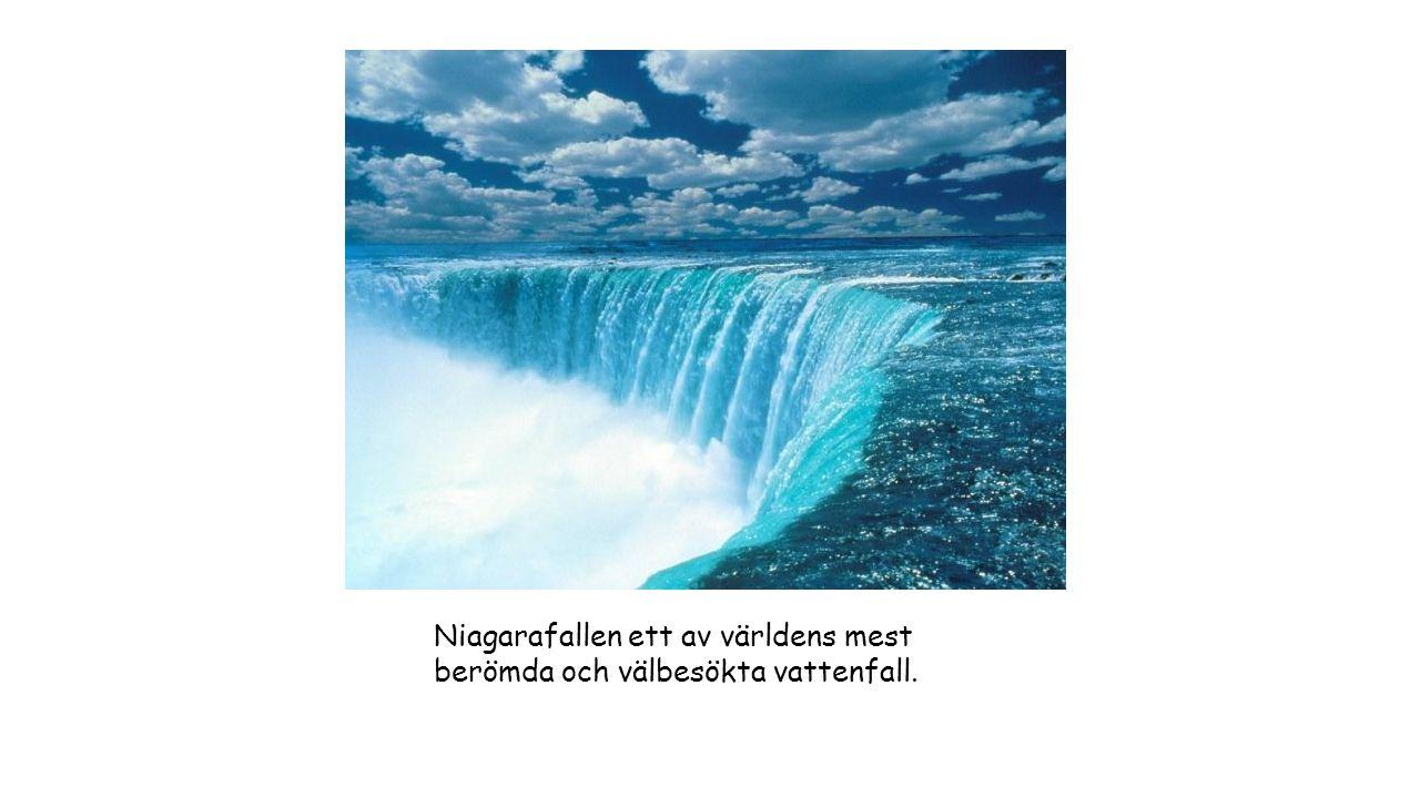 Niagarafallen ett av världens mest berömda och välbesökta vattenfall.