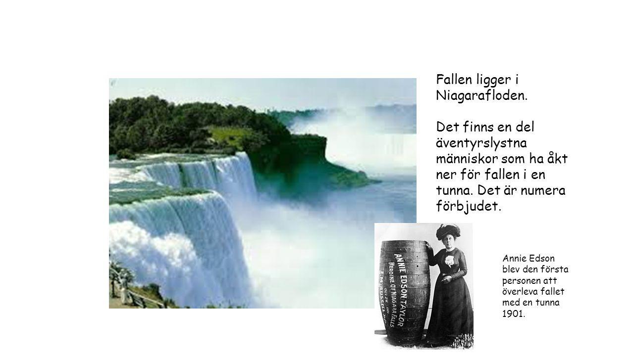 Fallen ligger i Niagarafloden. Det finns en del äventyrslystna människor som ha åkt ner för fallen i en tunna. Det är numera förbjudet. Annie Edson bl
