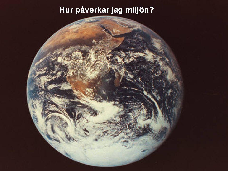 2010-04-01/ Kvalitet/ lager & terminalansvarig/Bengt Sigvald 6 Hur påverkar jag miljön?