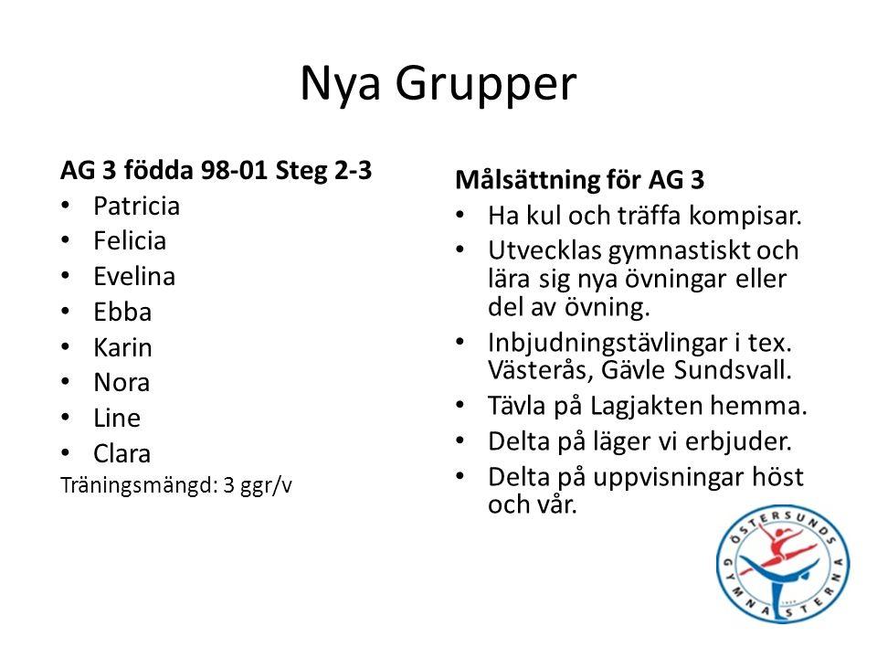 Nya grupper Grupp Tävlingar och Läger AG 4 Tränar 4 ggr/v 12/2 Lagjakten Östersund 18-20/3 Guldpokalen Stockholm 3-4/4 Westra Aros Cup Västerås 13/4 Påskägget Östersund AG 3 Tränar 3 ggr/v 12/2 Lagjakten Östersund 18-20/3 Guldpokalen Stockholm 13/4 Påskägget Östersund AG 2 Tränar 2 ggr/v 12/2 Lagjakten Östersund 13/4 Påskägget Östersund AG 1 Tränar 1 ggr/v 13/4 Påskägget Östersund