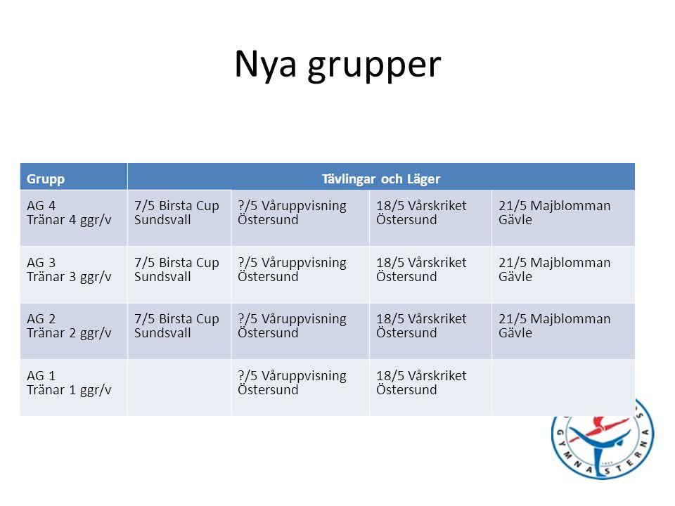 Nya Grupper Kvalificeringsbok och målstyrningsdok.