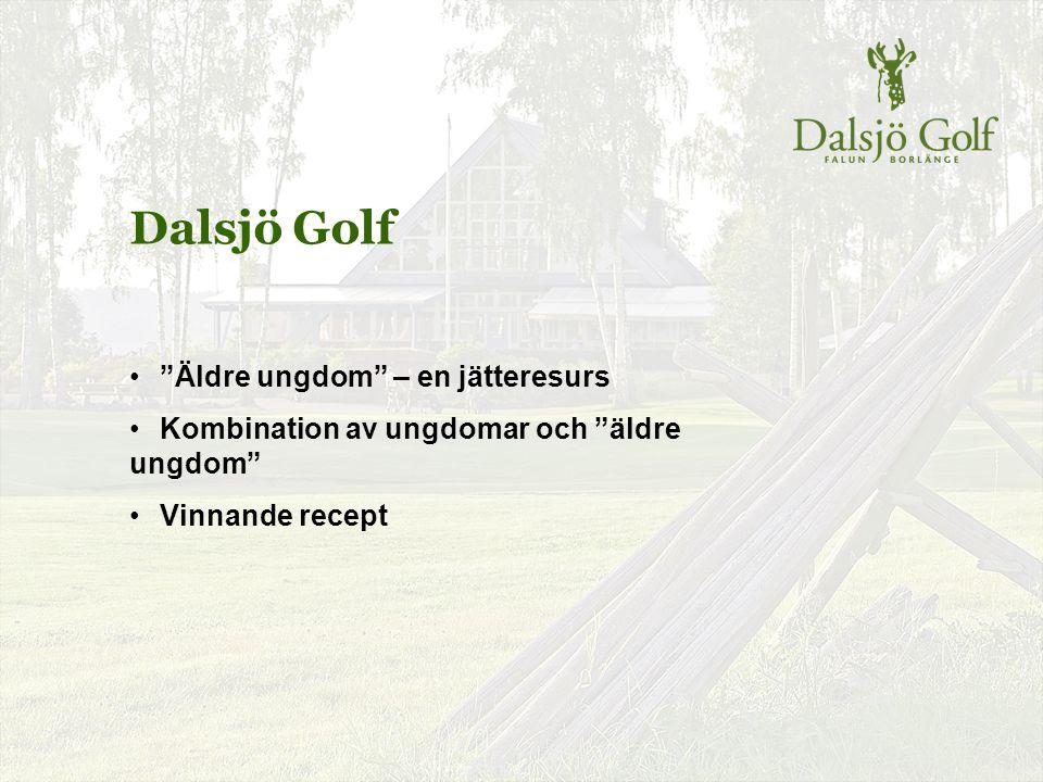 """Dalsjö Golf """"Äldre ungdom"""" – en jätteresurs Kombination av ungdomar och """"äldre ungdom"""" Vinnande recept"""
