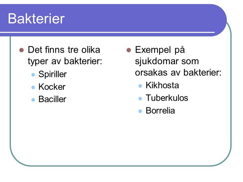 Bakterier Det finns tre olika typer av bakterier: Spiriller Kocker Baciller Exempel på sjukdomar som orsakas av bakterier: Kikhosta Tuberkulos Borrelia