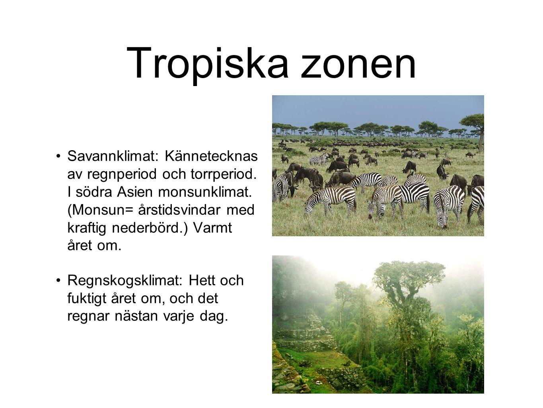 Tropiska zonen Savannklimat: Kännetecknas av regnperiod och torrperiod. I södra Asien monsunklimat. (Monsun= årstidsvindar med kraftig nederbörd.) Var