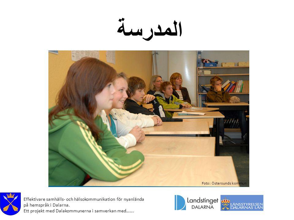 Effektivare samhälls- och hälsokommunikation för nyanlända på hemspråk i Dalarna. Ett projekt med Dalakommunerna i samverkan med……. المدرسة Foto: Öste