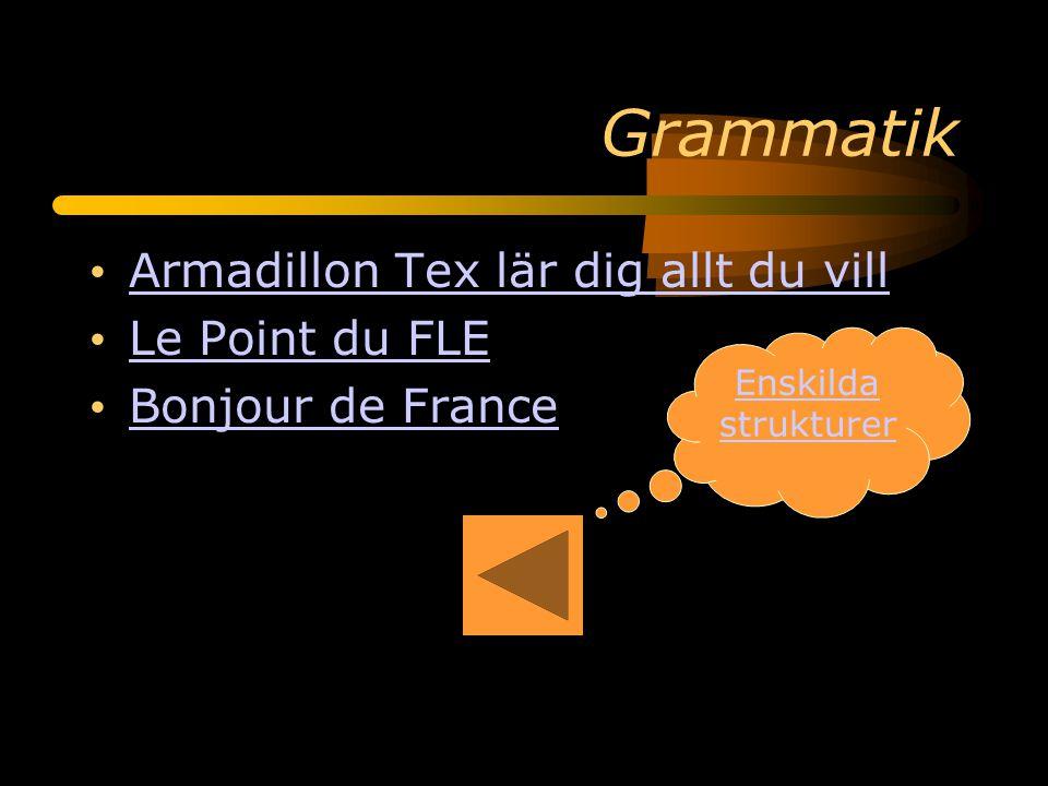 Grammatik Armadillon Tex lär dig allt du vill Le Point du FLE Bonjour de France Enskilda strukturer