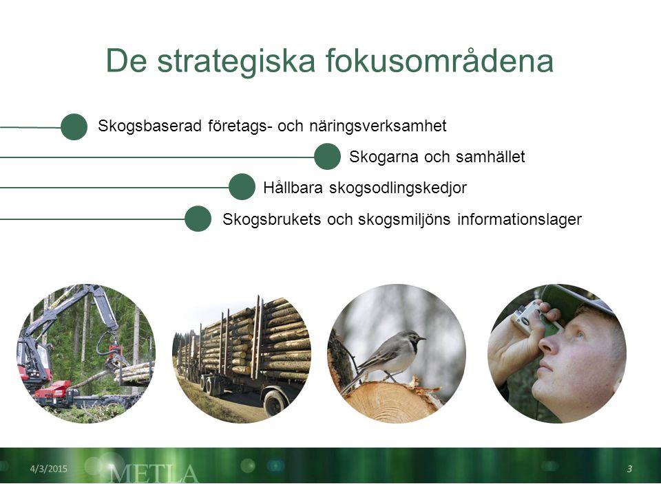 De strategiska fokusområdena 4/3/2015 3 Skogarna och samhället Hållbara skogsodlingskedjor Skogsbrukets och skogsmiljöns informationslager Skogsbaserad företags- och näringsverksamhet