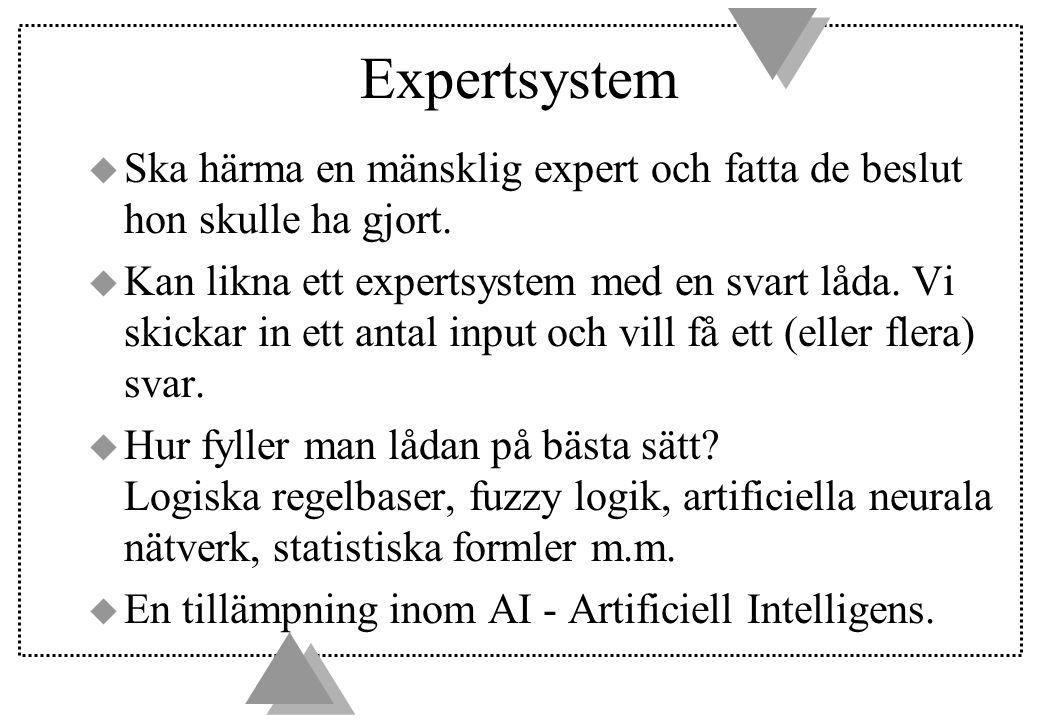 Expertsystem u Ska härma en mänsklig expert och fatta de beslut hon skulle ha gjort.