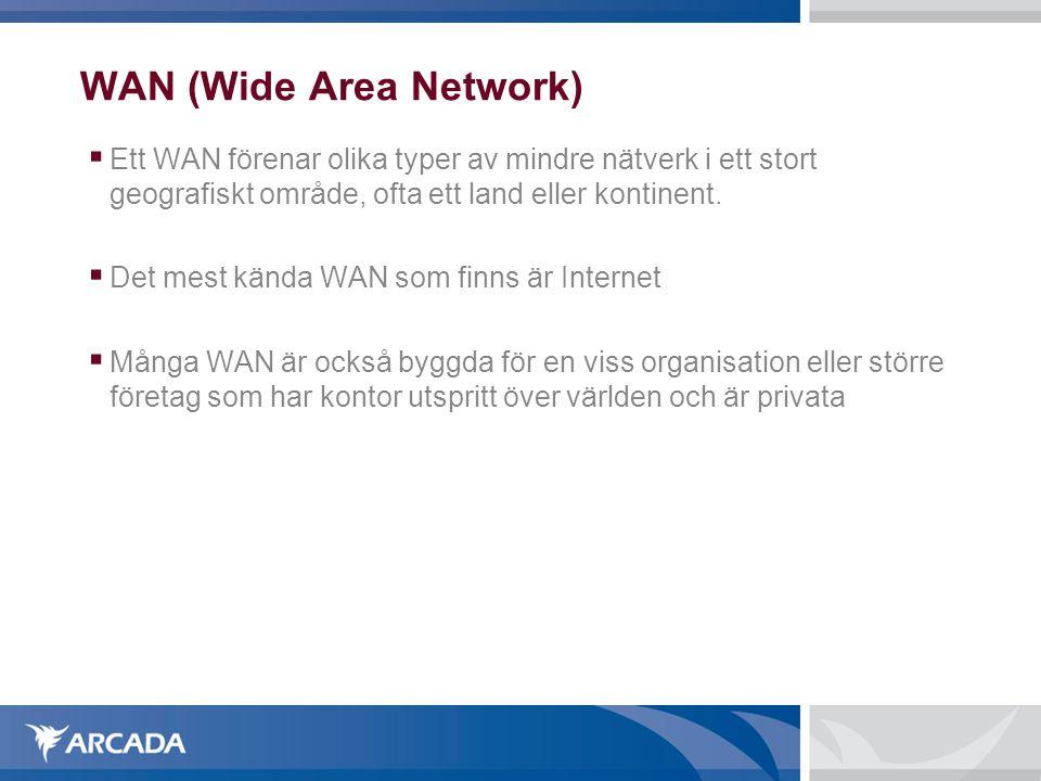 WAN (Wide Area Network)  Ett WAN förenar olika typer av mindre nätverk i ett stort geografiskt område, ofta ett land eller kontinent.