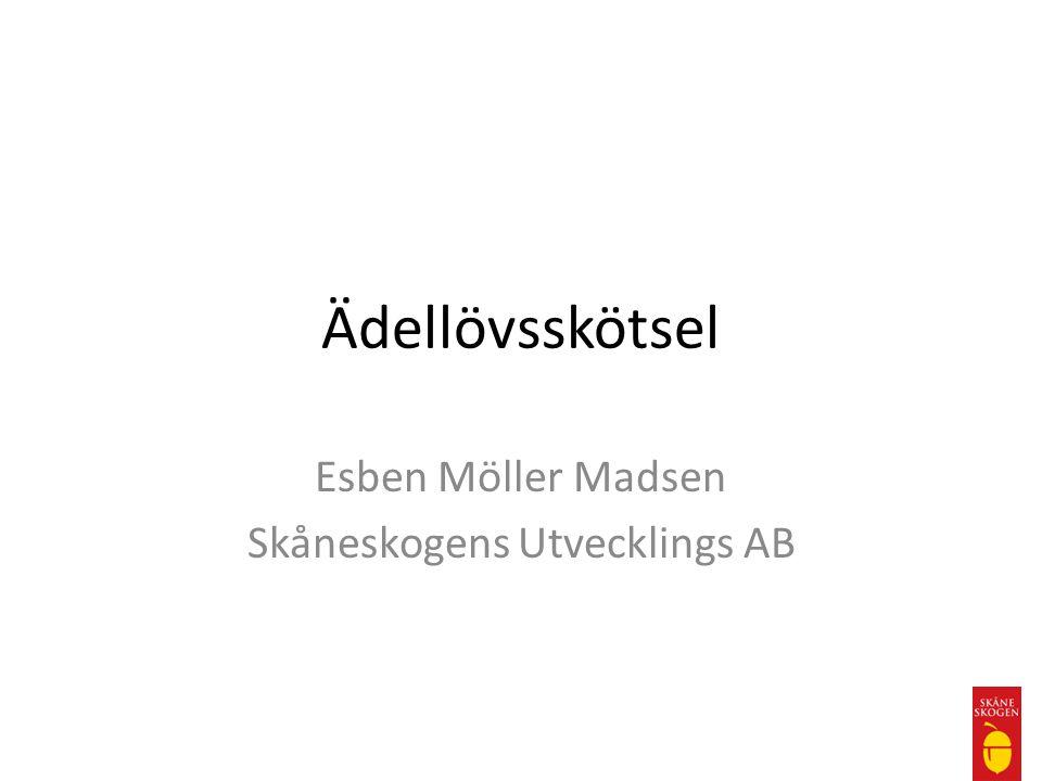 Ädellövsskötsel Esben Möller Madsen Skåneskogens Utvecklings AB