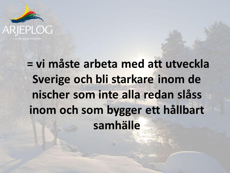 = vi måste arbeta med att utveckla Sverige och bli starkare inom de nischer som inte alla redan slåss inom och som bygger ett hållbart samhälle