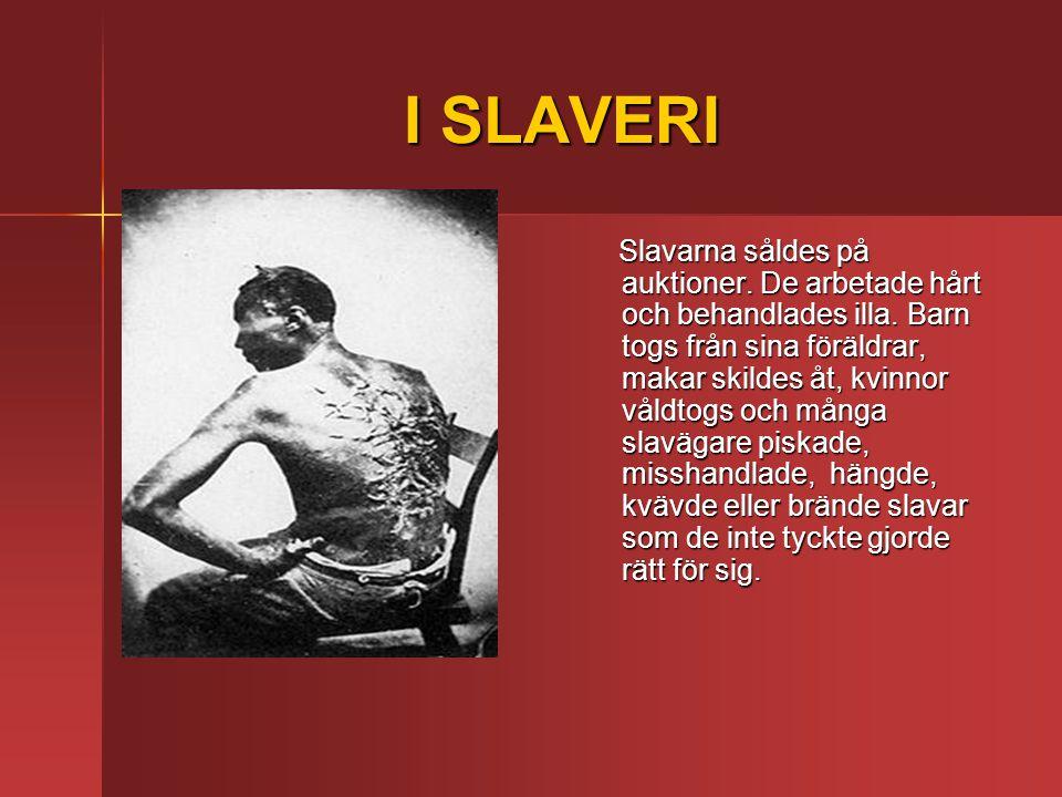 I SLAVERI Slavarna såldes på auktioner.De arbetade hårt och behandlades illa.