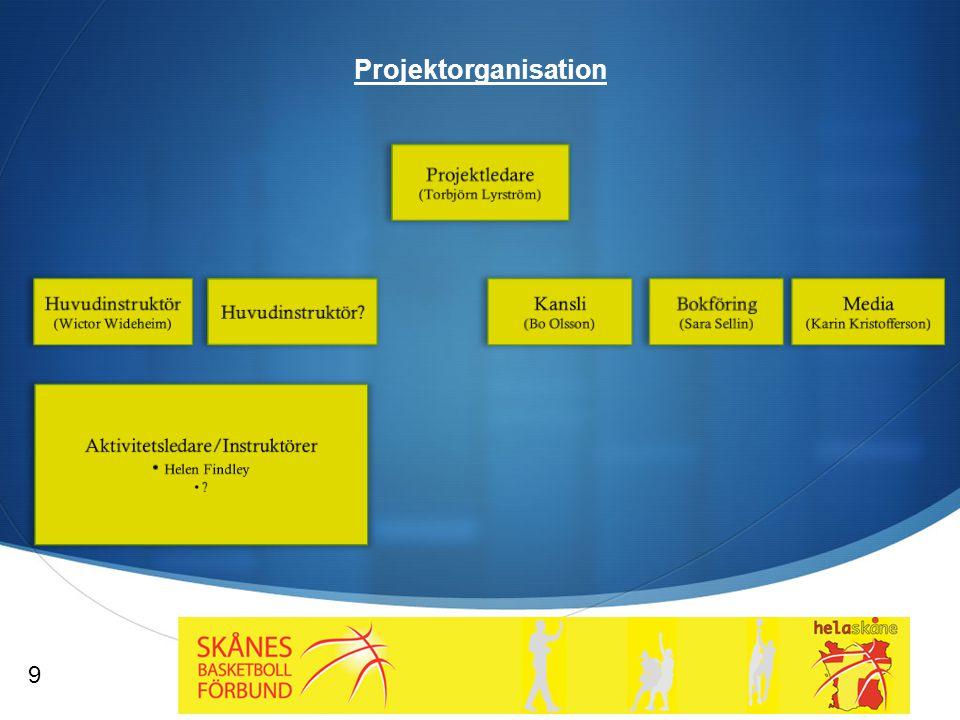  Projektorganisation 9