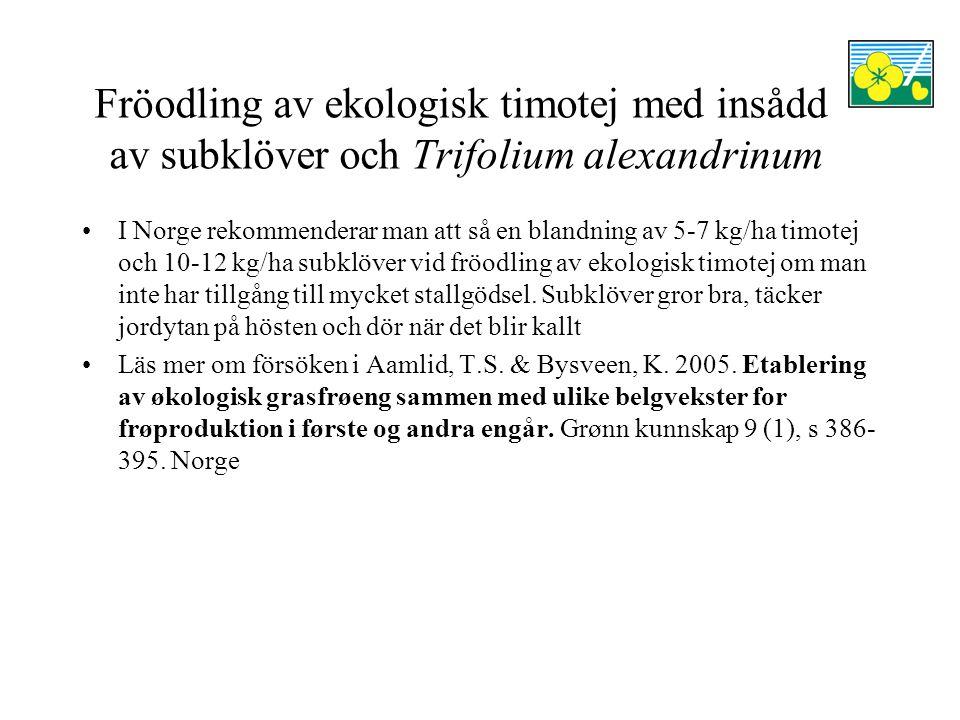 Fröodling av ekologisk timotej med insådd av subklöver och Trifolium alexandrinum I Norge rekommenderar man att så en blandning av 5-7 kg/ha timotej och 10-12 kg/ha subklöver vid fröodling av ekologisk timotej om man inte har tillgång till mycket stallgödsel.