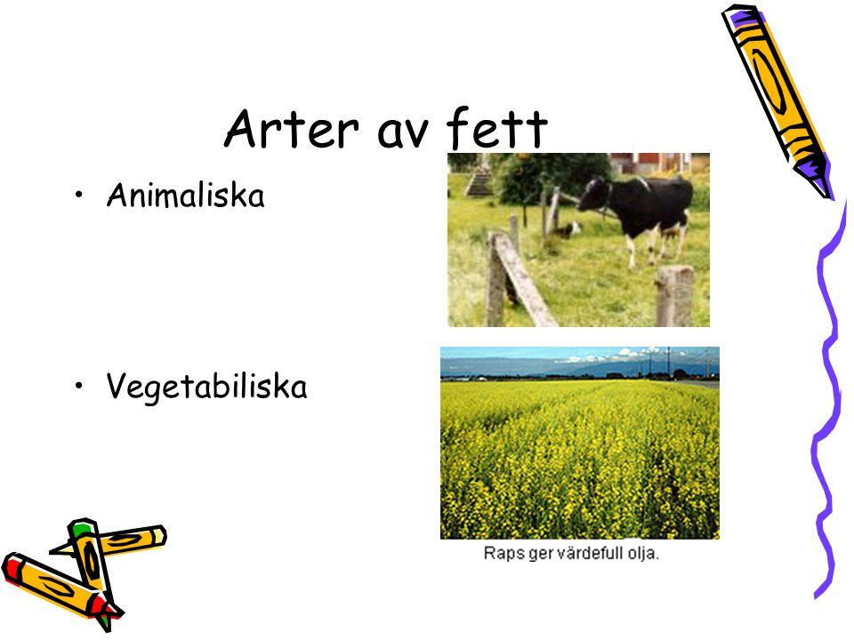Arter av fett Animaliska Vegetabiliska