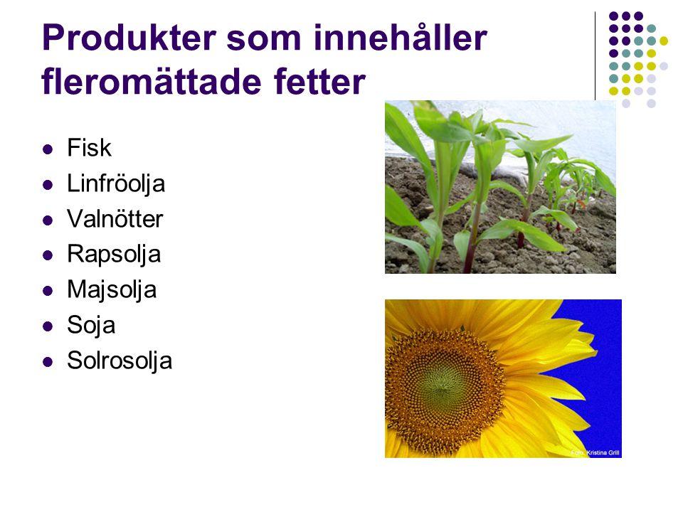Produkter som innehåller fleromättade fetter Fisk Linfröolja Valnötter Rapsolja Majsolja Soja Solrosolja